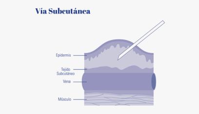Vía subcutánea